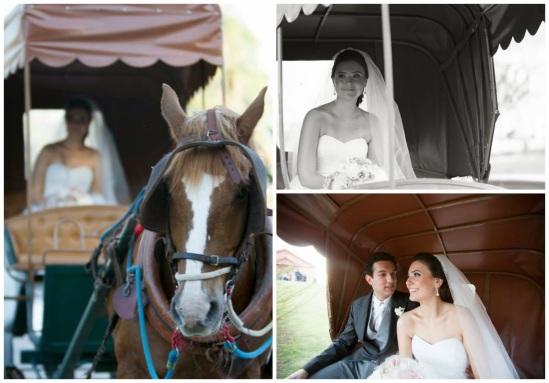 transporte noiva - carro da noiva - carro dos noivos - entrada noiva - carruagem - charrete - noiva - noivos - casamento de dia